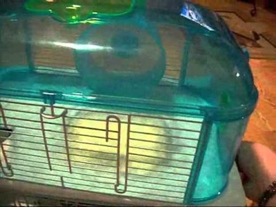 How To Clean Your Three Story Hamster Cage
