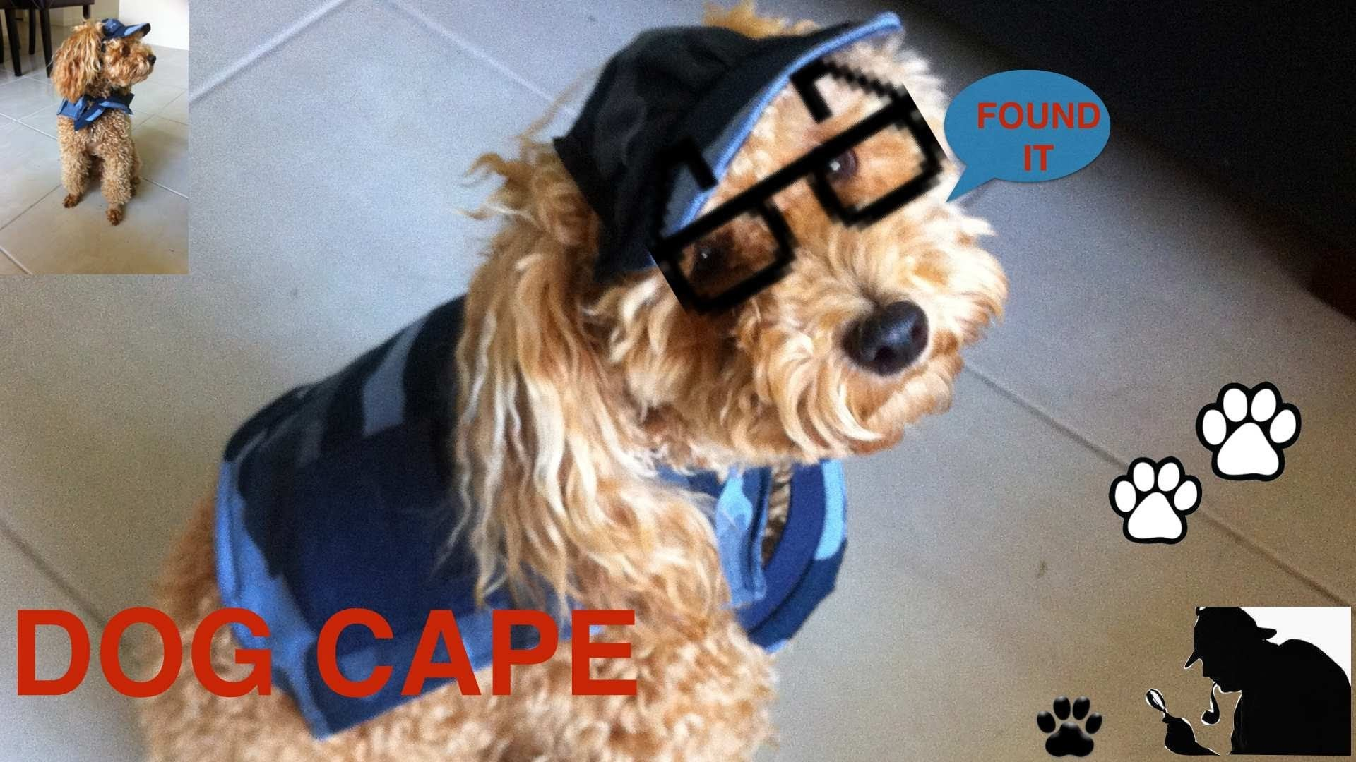 Easy Sew Dog Cape Diy Dog Clothes A Tutorial By Cooking For Dogs