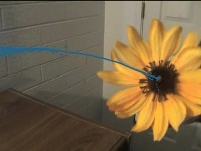 How To Make a Squirting Flower!
