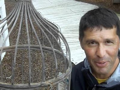A Bird Cage Hanging Basket
