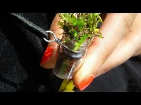 Living Necklace!? DIY Terrarium Pendant. Charm Tutorial   Gift Idea