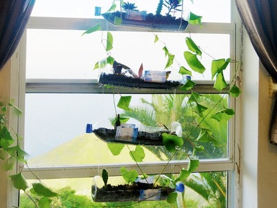 How to Build a Hanging Bottle Garden for FREE