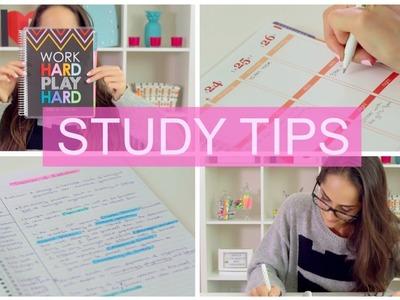 Climb your way to an A!   STUDY TIPS + DIY Organization  