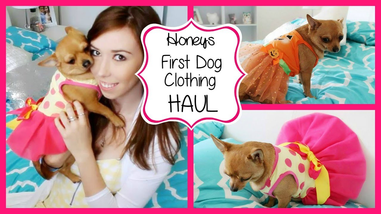 First Dog Clothing Haul ♡ Honey
