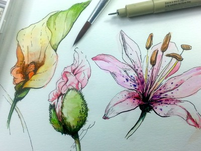 How to Draw & Paint Flowers with Ink and Watercolor Part 1