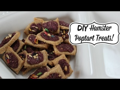 DIY Hamster Poptart Treats