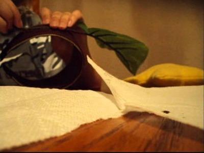 Poupu Fruit Headpiece Tutorial