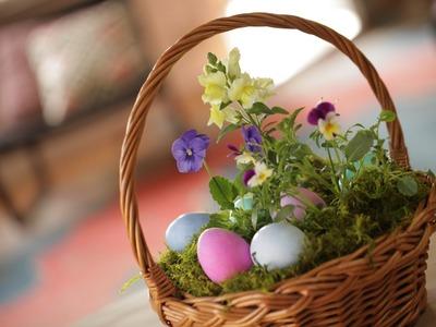 Robert's Living Easter Basket