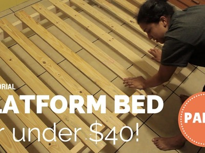 How To Build a Platform Bed for $40- Part 2 of 3