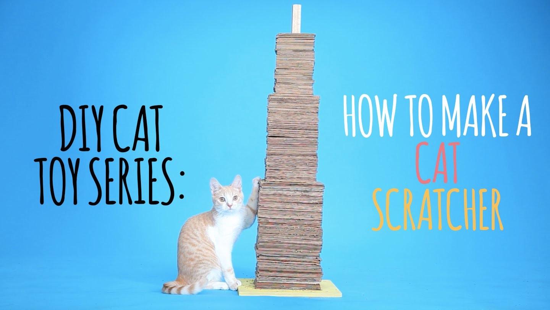 DIY Cat Toys - How to Make a Cat Scratcher