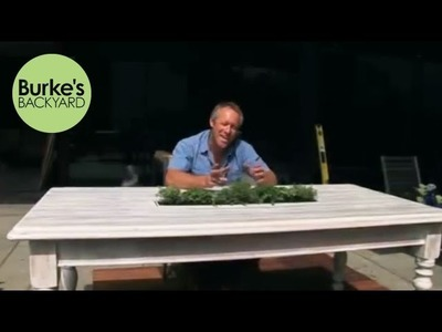 Burke's Backyard, How to Make an Outdoor Table Centrepiece