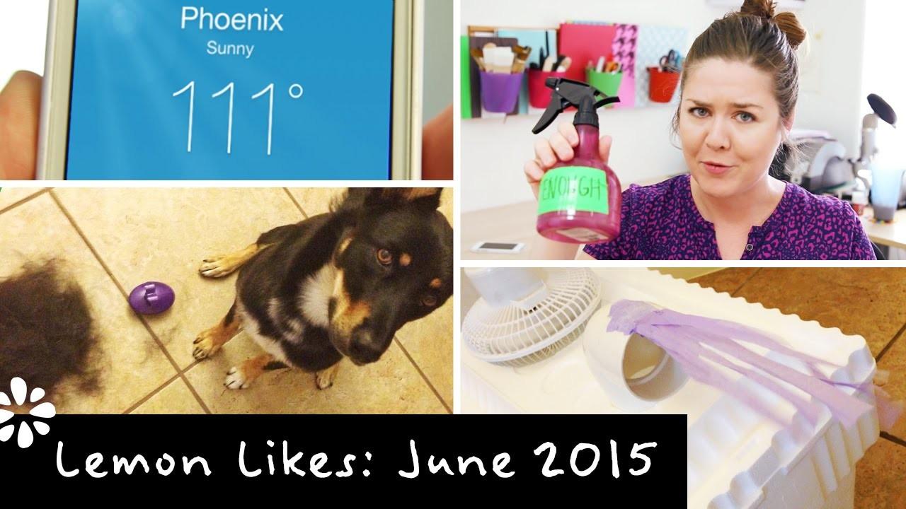 June 2015 ❋ Lemon Likes | DIY AC Cooler & Dog Toy Haul