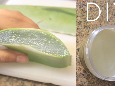 DIY Aloe Vera Juice For Hair, Skin and Health (Curly Penny)