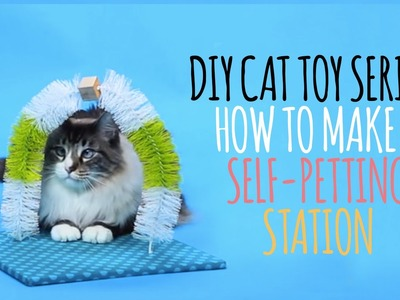 DIY Cat Toys - How to Make a Self Petting Station