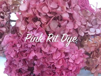 How To dry Hydrangeas & How to Color Hydrangeas