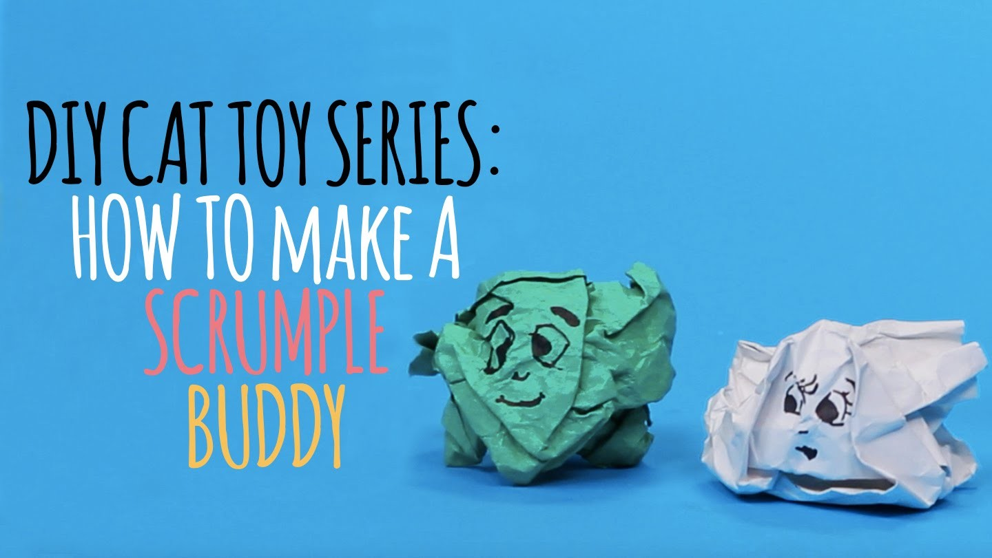 DIY Cat Toys - How to Make a Scrumple Buddy