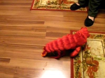 Raisins Halloween costume 2009