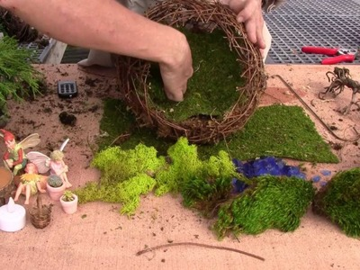 How to Plant a Willow Fairy Sphere for Indoor (part 2)