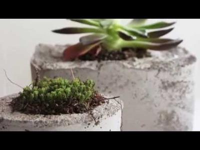 12 DIY Concrete Outdoor Planters