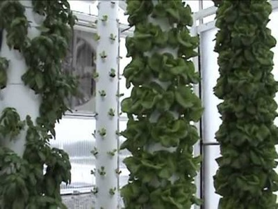 Aquaponics System in a Retractable Roof Greenhouse in Florida.wmv
