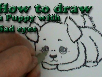 How to draw a Fluffy puppy with sad eyes