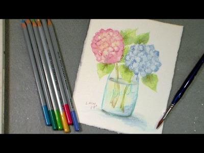 Watercolor pencil hydrangea