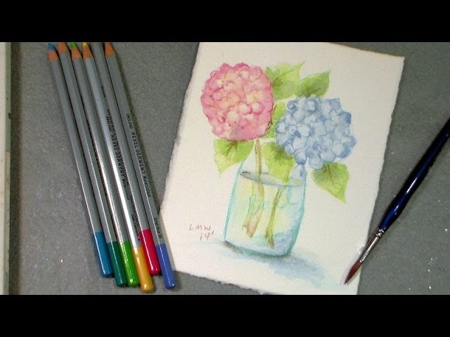 Watercolor pencil hydrangea