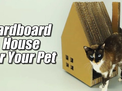 Cardboard House for your pet, how it's done