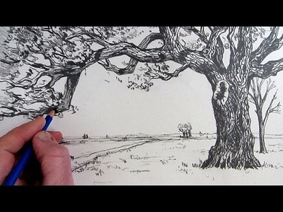 How To Draw A Tree: Narrated step by step