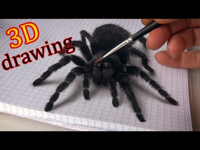 3D Spider Drawing.AMAZING realistic illusion!