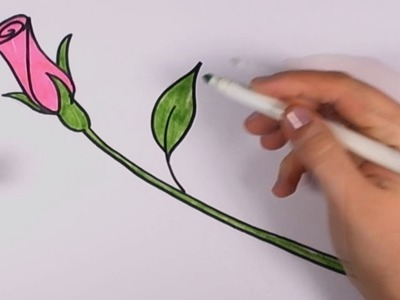 How to Draw a Rose for Beginners - Pink Rose Bud Art Tutorial CC