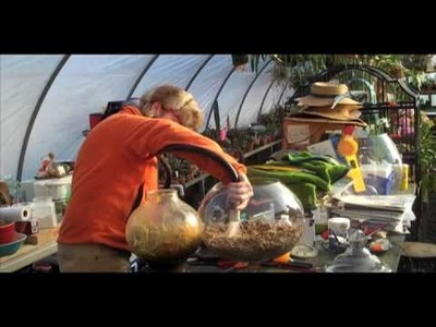 Creating a Terrarium by Ken Selody of Atlock Flower Farm
