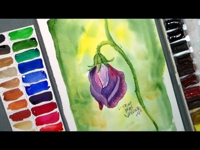 How to Paint a Sweet Pea Blossom in Watercolor