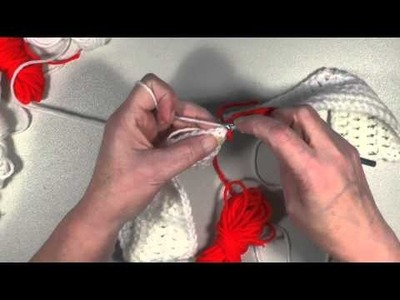 Crochet Tutorial - Lady Bug Graph in DC - Part #3