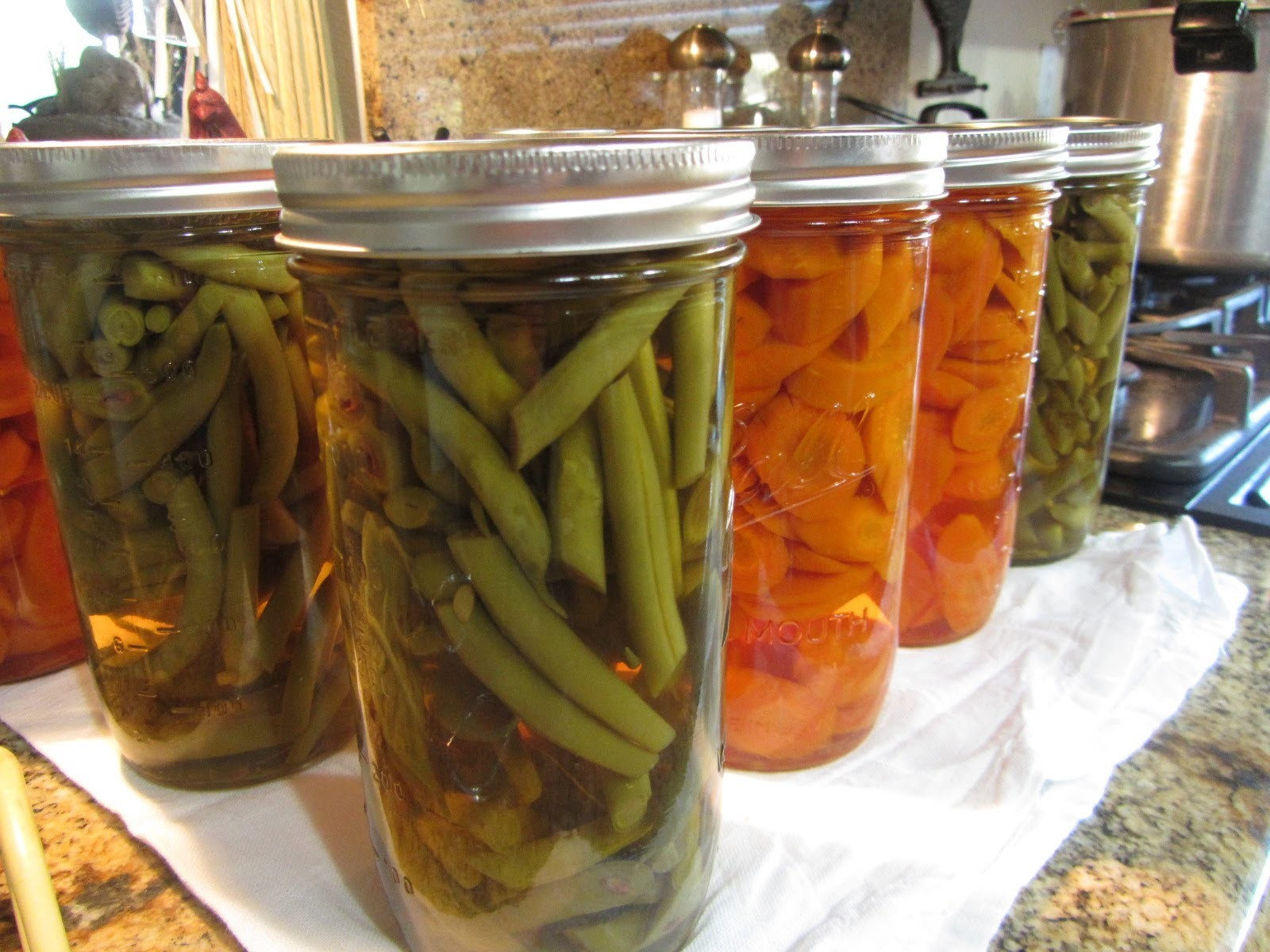 Home Canned Green Beans & Carrots From The Garden