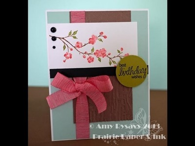 AmyRs 2013 Birthday Card Series - Card 2