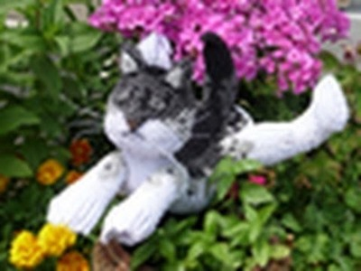 This Video Let You know How to Create a Speical 3D Origami Cat