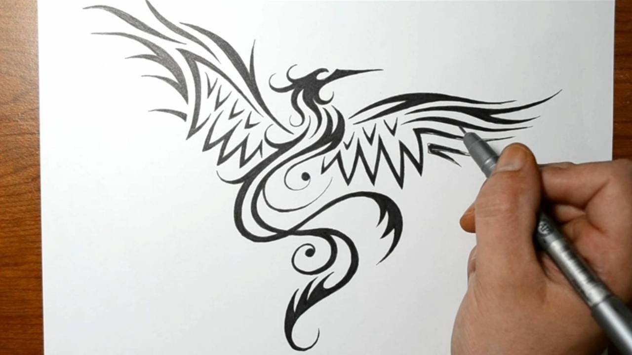 How to Draw a Phoenix Bird - Tribal Tattoo Design Style