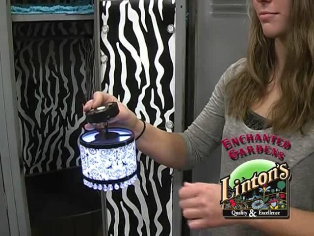 Linton's Has LockerLookz!