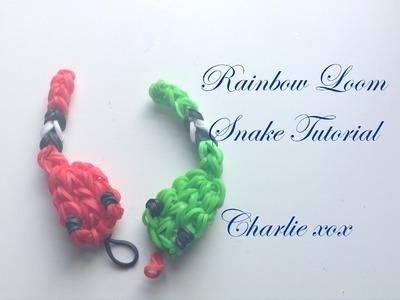 Rainbow Loom Snake Tutorial!