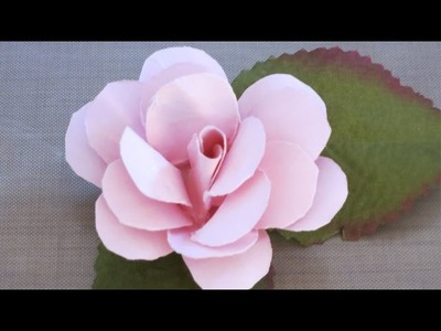 EASY PAPER ROSE (Not Origami)