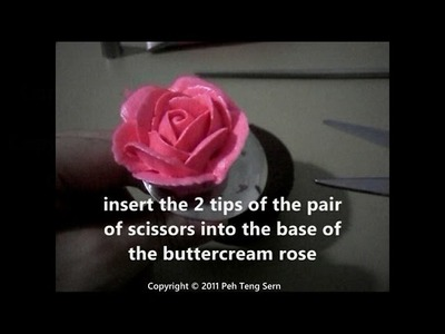 Cupcake decorating: buttercream roses (secret formula!)