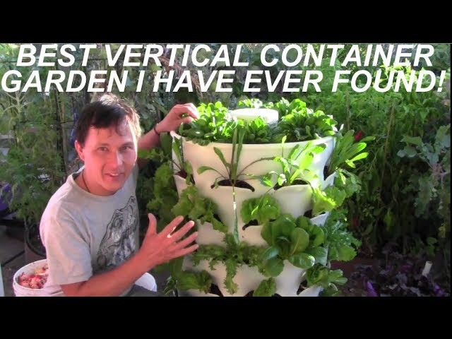 Grow 53 Plants in 4 Sq Ft with a Garden Tower Vertical Container Garden