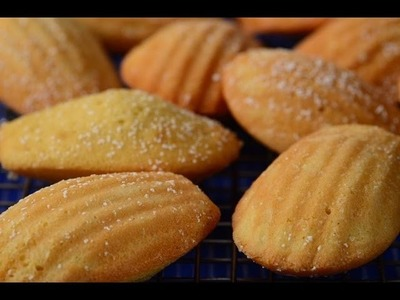 Madeleines Recipe Demonstration - Joyofbaking.com