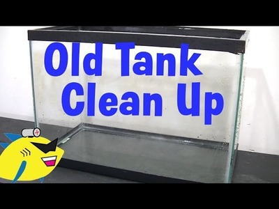 How to Clean up an Old Aquarium