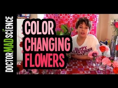 Valentines Day - Make a Multi Color Flower !!