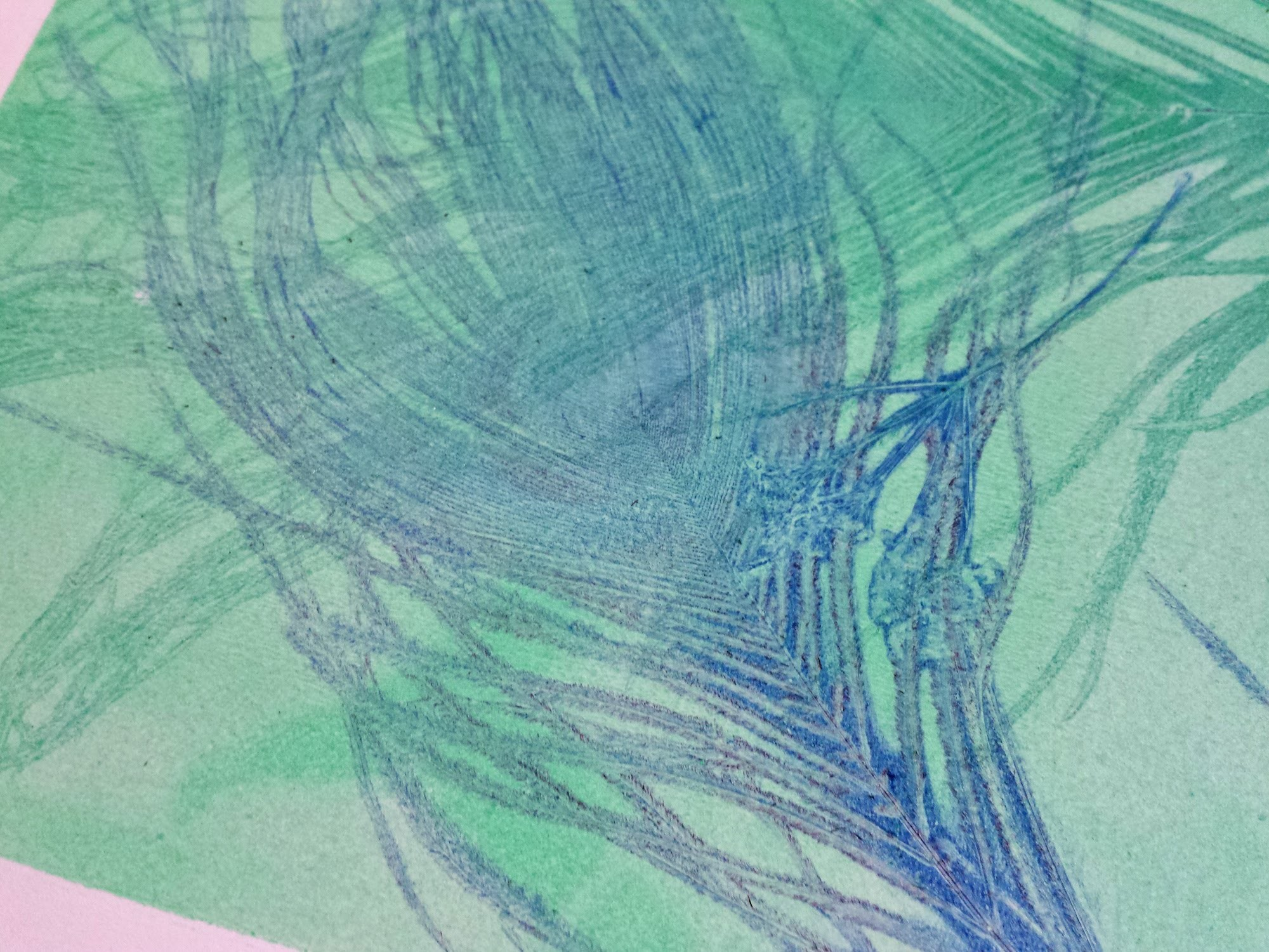 Gelli printing with plants and feathers
