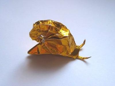Origami Snail by Shiri Daniel (Part 1 of 2)