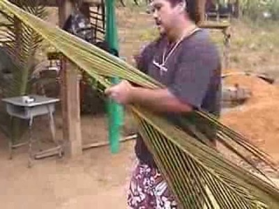 Paul Munet climbing a Coconut tree in Hawaii and weaving in Thailand part 2
