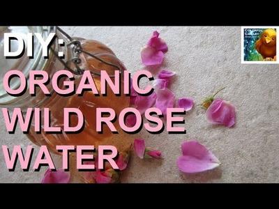 DIY: Organic Wild Rose Petal Water